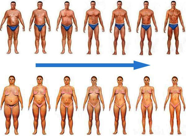 comment maigrir le ventre