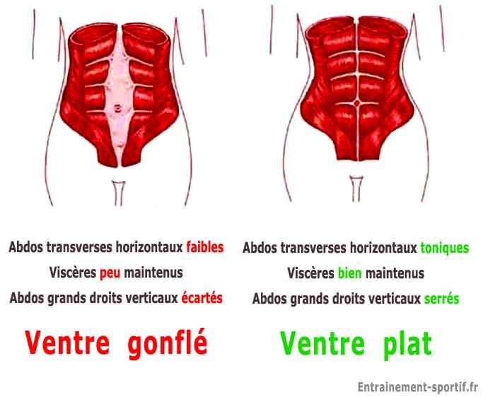 comment maigrir tres vite du ventre - Comment maigrir