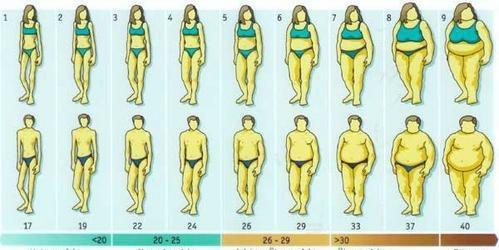 Quel sport pour maigrir ? Courir, faire du jogging
