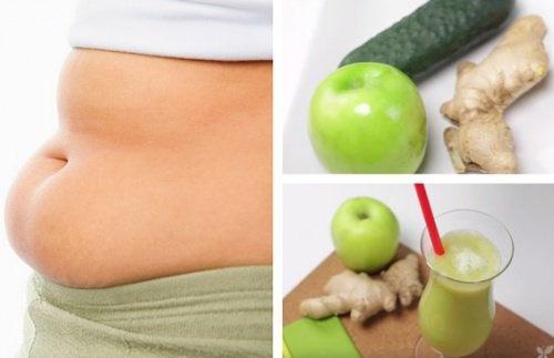 perdre du poids the vert