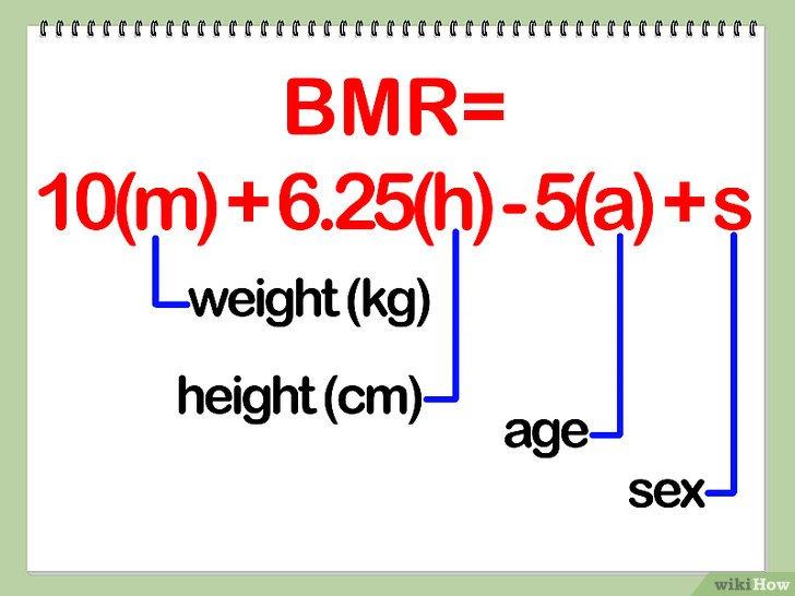 perdre du poids calcul calories - Comment maigrir