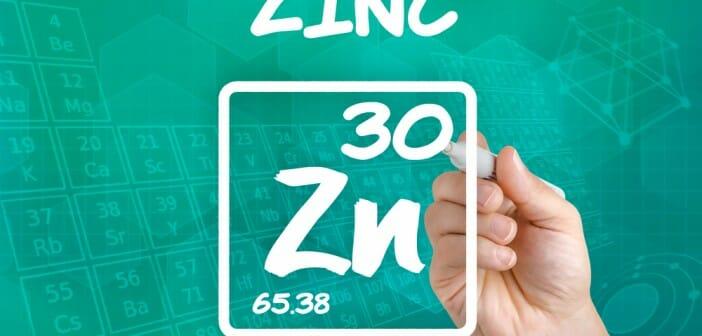 perdre du poids zinc - Comment maigrir